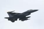 Mochi7D2さんが、横田基地で撮影したアメリカ空軍 F-16CM-40-CF Fighting Falconの航空フォト(写真)