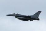 Mochi7D2さんが、横田基地で撮影したアメリカ空軍 F-16CM-50-CF Fighting Falconの航空フォト(写真)