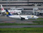 カップメーンさんが、羽田空港で撮影したスカイマーク 737-86Nの航空フォト(写真)