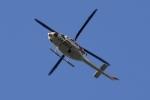 Timothyさんが、山武市で撮影した朝日航洋 412の航空フォト(写真)