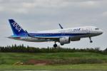 saoya_saodakeさんが、成田国際空港で撮影した全日空 A320-271Nの航空フォト(写真)