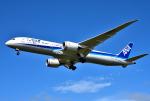 mojioさんが、成田国際空港で撮影した全日空 787-9の航空フォト(飛行機 写真・画像)
