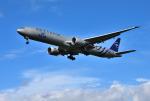 mojioさんが、成田国際空港で撮影したKLMオランダ航空 777-306/ERの航空フォト(飛行機 写真・画像)