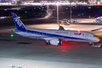 chrisshoさんが、羽田空港で撮影した全日空 787-8 Dreamlinerの航空フォト(写真)