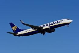 航空フォト:EI-DCX ライアンエア 737-800