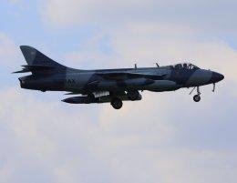 VICTER8929さんが、厚木飛行場で撮影したATAC Hunter F.58の航空フォト(飛行機 写真・画像)