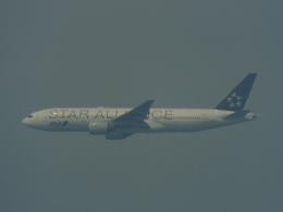 otromarkさんが、八尾空港で撮影した全日空 777-281の航空フォト(飛行機 写真・画像)