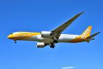 mojioさんが、成田国際空港で撮影したスクート 787-9の航空フォト(飛行機 写真・画像)
