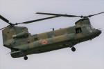 Smyth Newmanさんが、木更津飛行場で撮影した陸上自衛隊 CH-47JAの航空フォト(写真)