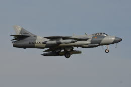 350JMさんが、厚木飛行場で撮影したATAC Hunter F.58の航空フォト(飛行機 写真・画像)