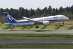 ANA744Foreverさんが、成田国際空港で撮影した全日空 787-8 Dreamlinerの航空フォト(写真)