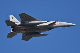 betaさんが、小松空港で撮影した航空自衛隊 F-15DJ Eagleの航空フォト(写真)