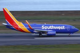masa707さんが、ポートランド国際空港で撮影したサウスウェスト航空 737-7H4の航空フォト(飛行機 写真・画像)