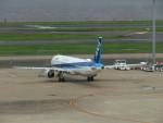 カップメーンさんが、羽田空港で撮影した全日空 A321-211の航空フォト(写真)