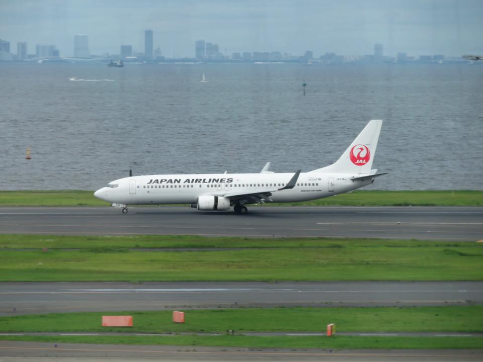 カップメーンさんの日本航空 Boeing 737-800 (JA318J) 航空フォト