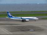 カップメーンさんが、羽田空港で撮影した全日空 737-881の航空フォト(写真)