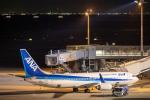 こうきさんが、羽田空港で撮影した全日空 737-881の航空フォト(写真)