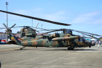 Wasawasa-isaoさんが、横田基地で撮影した陸上自衛隊 UH-60JAの航空フォト(写真)