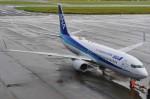 Y.Mayumi_B767さんが、宮崎空港で撮影した全日空 737-881の航空フォト(写真)
