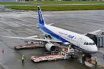 Y.Mayumi_B767さんが、宮崎空港で撮影した全日空 A320-211の航空フォト(写真)