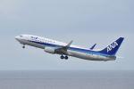 ワイエスさんが、中部国際空港で撮影した全日空 737-881の航空フォト(写真)