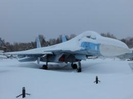 Smyth Newmanさんが、モニノ空軍博物館で撮影したロシア空軍 Su-35の航空フォト(飛行機 写真・画像)
