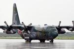 鈴鹿@風さんが、松島基地で撮影した航空自衛隊 C-130H Herculesの航空フォト(写真)