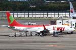 セブンさんが、成田国際空港で撮影したティーウェイ航空 737-8Q8の航空フォト(飛行機 写真・画像)