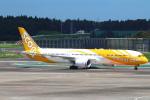 セブンさんが、成田国際空港で撮影したスクート 787-9の航空フォト(飛行機 写真・画像)