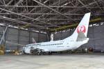 B747‐400さんが、羽田空港で撮影した日本航空 737-846の航空フォト(写真)