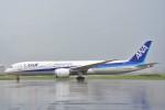 B747‐400さんが、羽田空港で撮影した全日空 787-9の航空フォト(写真)