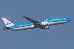 mameshibaさんが、成田国際空港で撮影したKLMオランダ航空 787-9の航空フォト(飛行機 写真・画像)