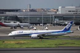 KAZFLYERさんが、羽田空港で撮影した全日空 787-9の航空フォト(写真)
