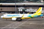 セブンさんが、成田国際空港で撮影したセブパシフィック航空 A320-271Nの航空フォト(飛行機 写真・画像)