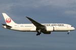 セブンさんが、成田国際空港で撮影した日本航空 787-8 Dreamlinerの航空フォト(飛行機 写真・画像)