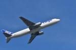 南国の防人さんが、成田国際空港で撮影した全日空 767-381/ER(BCF)の航空フォト(写真)