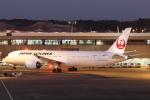 セブンさんが、成田国際空港で撮影した日本航空 787-9の航空フォト(飛行機 写真・画像)
