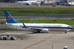 セブンさんが、羽田空港で撮影した中国南方航空 737-81Bの航空フォト(飛行機 写真・画像)