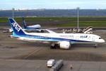 セブンさんが、羽田空港で撮影した全日空 787-8 Dreamlinerの航空フォト(写真)