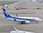 とびたさんが、中部国際空港で撮影した全日空 737-781の航空フォト(飛行機 写真・画像)