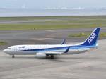 とびたさんが、中部国際空港で撮影した全日空 737-881の航空フォト(写真)