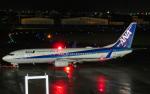 かっちゃんWWさんが、宮崎空港で撮影した全日空 737-881の航空フォト(写真)