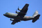 kazuchiyanさんが、岩国空港で撮影した航空自衛隊 C-130H Herculesの航空フォト(写真)