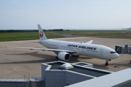 新潟空港 - Niigata Airport [KIJ/RJSN]で撮影された日本航空 - Japan Airlines [JL/JAL]の航空機写真