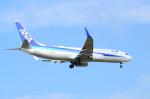 ITM58さんが、小松空港で撮影した全日空 737-881の航空フォト(写真)