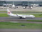 カップメーンさんが、羽田空港で撮影した日本航空 737-846の航空フォト(写真)