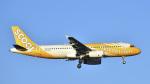 パンダさんが、成田国際空港で撮影したスクート A320-232の航空フォト(飛行機 写真・画像)
