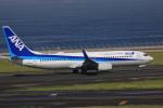けいとパパさんが、中部国際空港で撮影した全日空 737-881の航空フォト(写真)