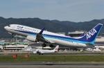 だいまる。さんが、伊丹空港で撮影した全日空 737-881の航空フォト(写真)