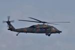yabyanさんが、名古屋飛行場で撮影した陸上自衛隊 UH-60JAの航空フォト(飛行機 写真・画像)